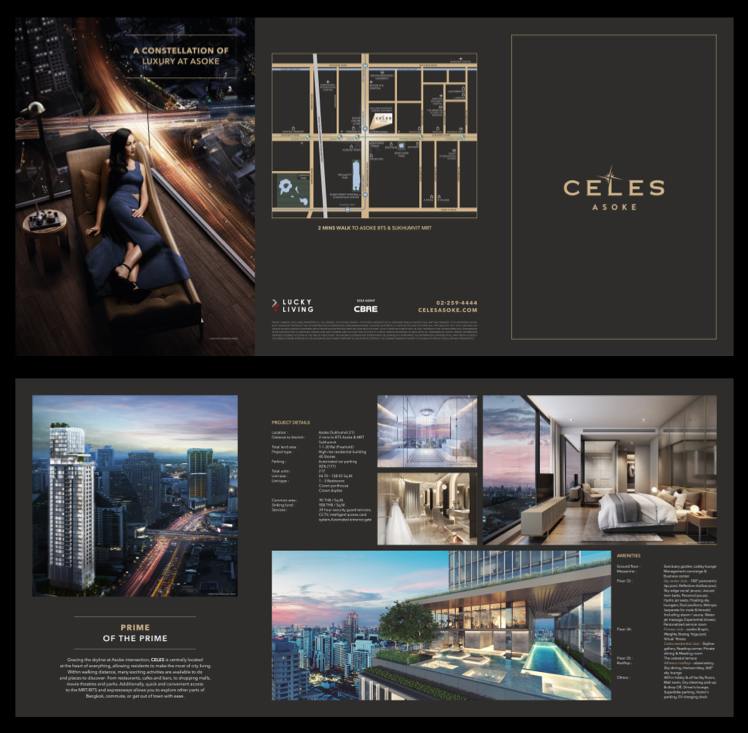 Celes Asoke - conspiracy creative digital agency