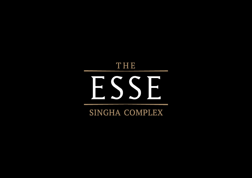 The Esse Singha Complex - conspiracy creative digital agency