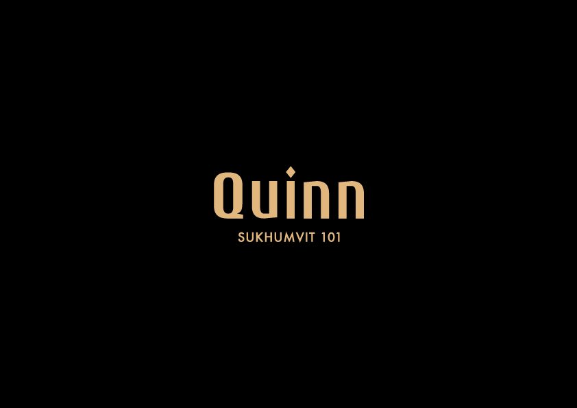Quinn - conspiracy creative digital agency